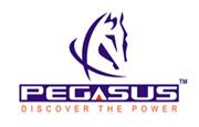 Pegasus Tele Secure